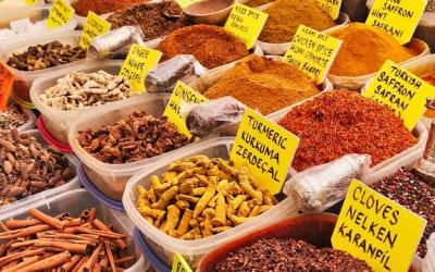 Türkei Vegan Reisewörterbuch: 60 nützliche Wörter Deutsch – Türkisch