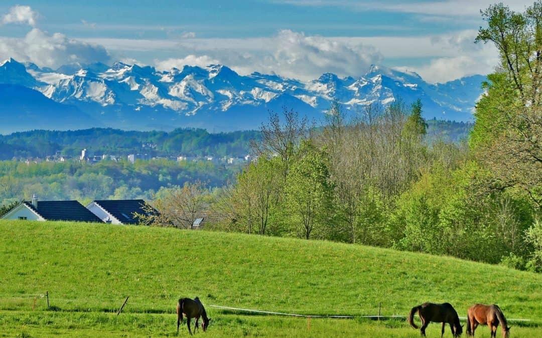 Vegan reisen in der Schweiz – Tipps von Bettina