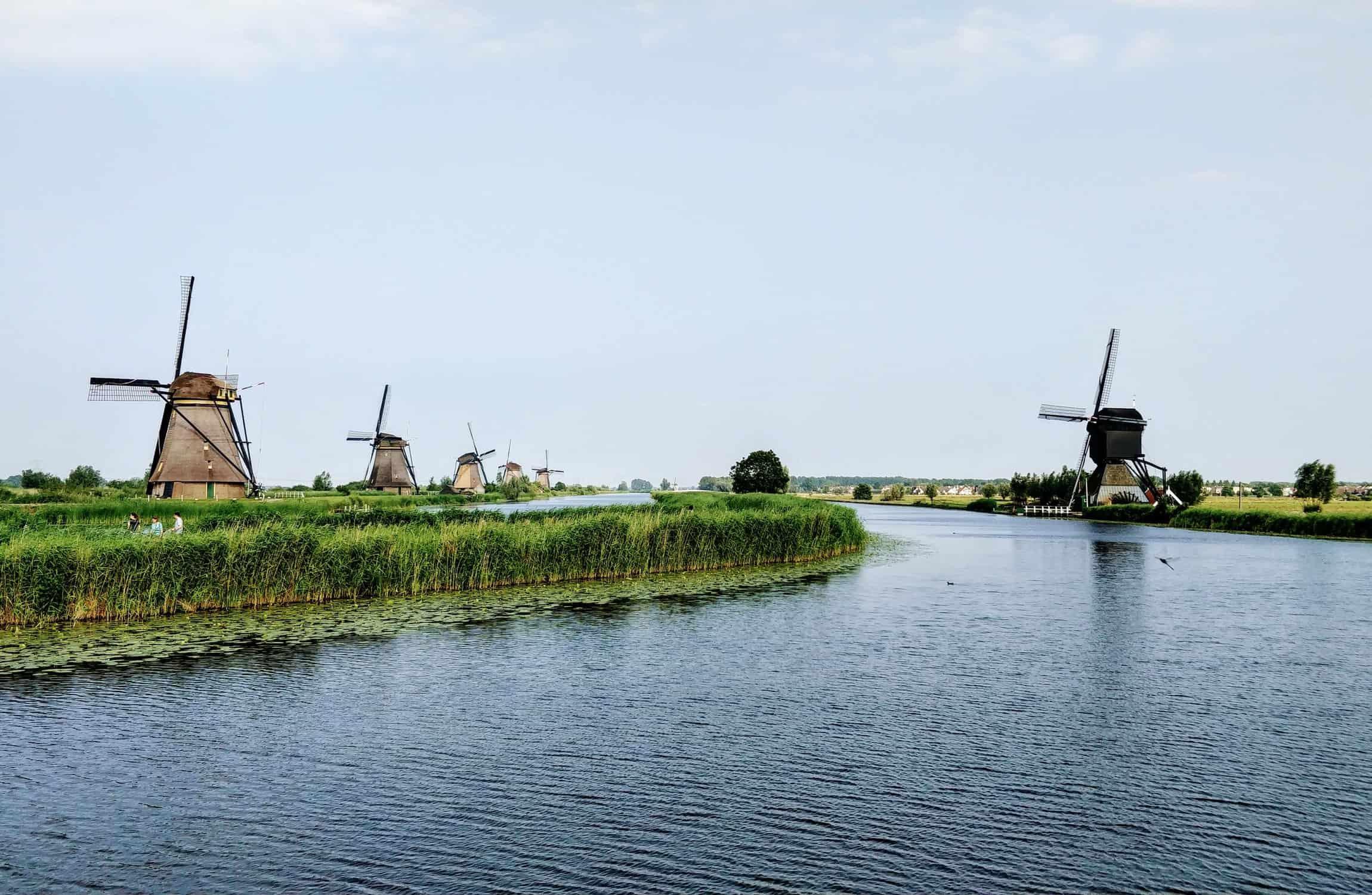 Vegan reisen in den Niederlanden